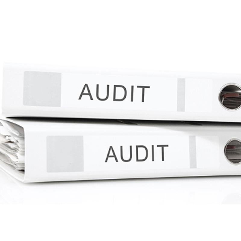 2015-06-audit