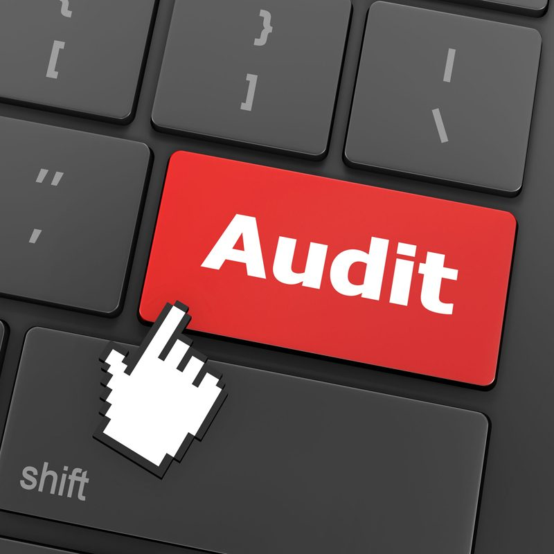 ISIS12 audit